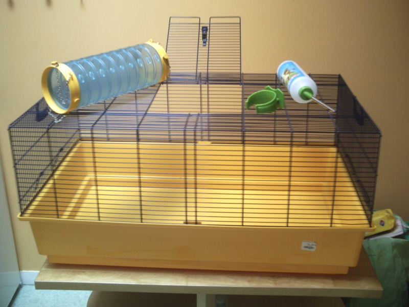 Vend cage Ruffy 2 SAVIC Pict0210