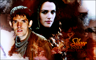 [Merlin] Audiences Silver10