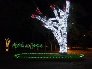 Programme des fêtes de Noël à Itajuba P1040011