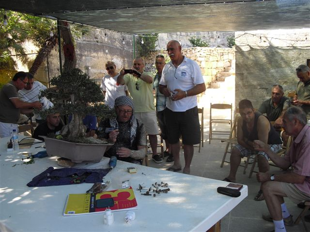 Kevin Willson Workshops at BCG's 21st Bonsai Annual Exhibition 2012 Cimg7714