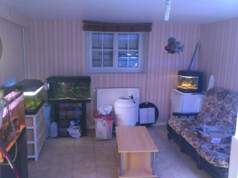 ma fishroom Dsc_0810