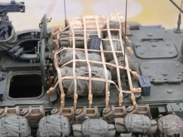 M1130 Stryter Commmand Venicle  1-35 scale - Page 4 P1070016