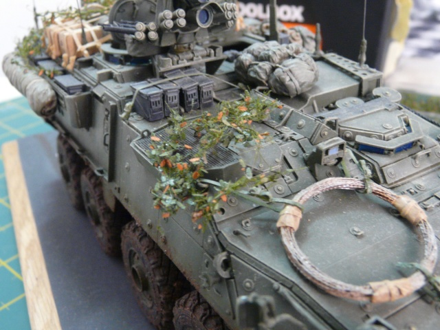 M1130 Stryter Commmand Venicle  1-35 scale - Page 4 P1070021