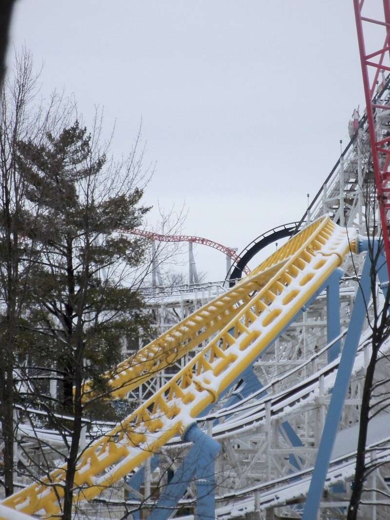 Skyrush Official Discussion Thread - Page 2 100_3029