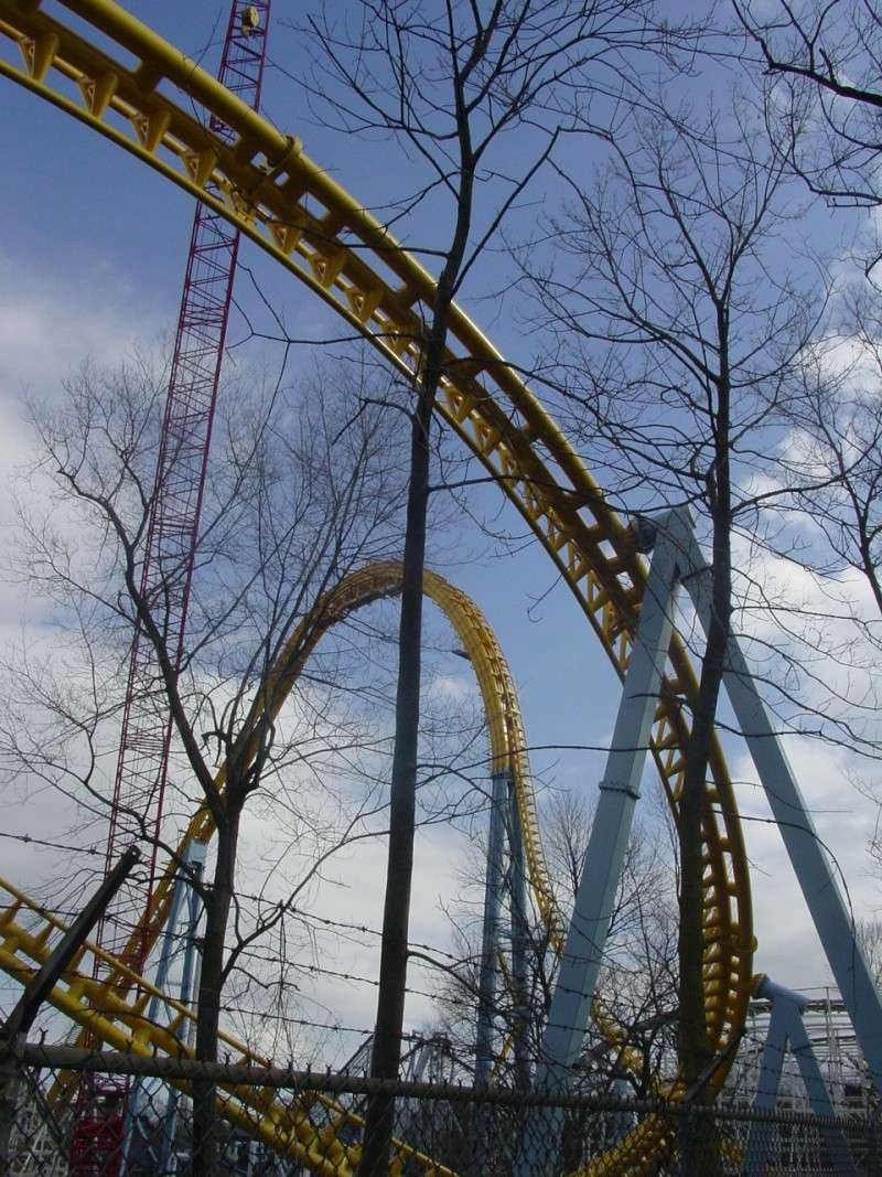 Skyrush Official Discussion Thread - Page 4 Dsc08331