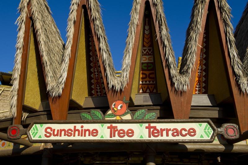 Historic Orange Bird Returns to Adventureland at Magic Kingdom Park Rng77210