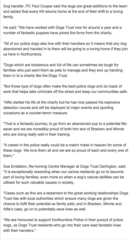 Those incredibly 'unreliable' DOGS............again! - Page 7 154