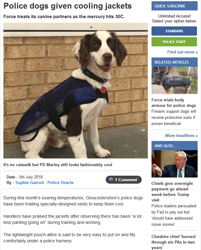 Those incredibly 'unreliable' DOGS............again! - Page 6 313