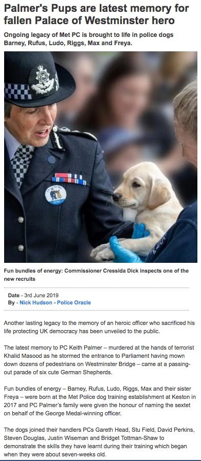 Those incredibly 'unreliable' DOGS............again! - Page 9 Dogs11