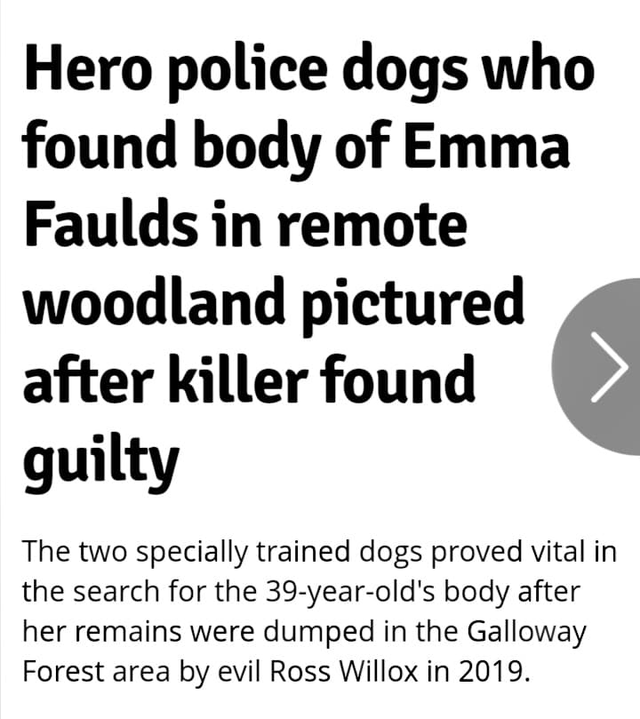 Those incredibly 'unreliable' DOGS............again! - Page 15 Ef10