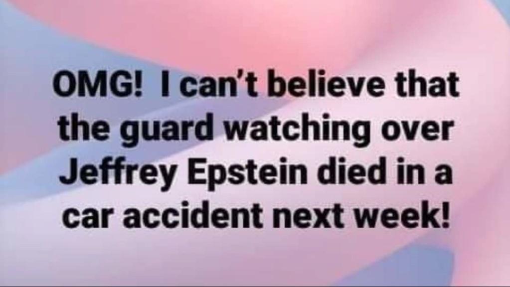 The Strange World of Jeffrey Epstein - Page 8 Guard10
