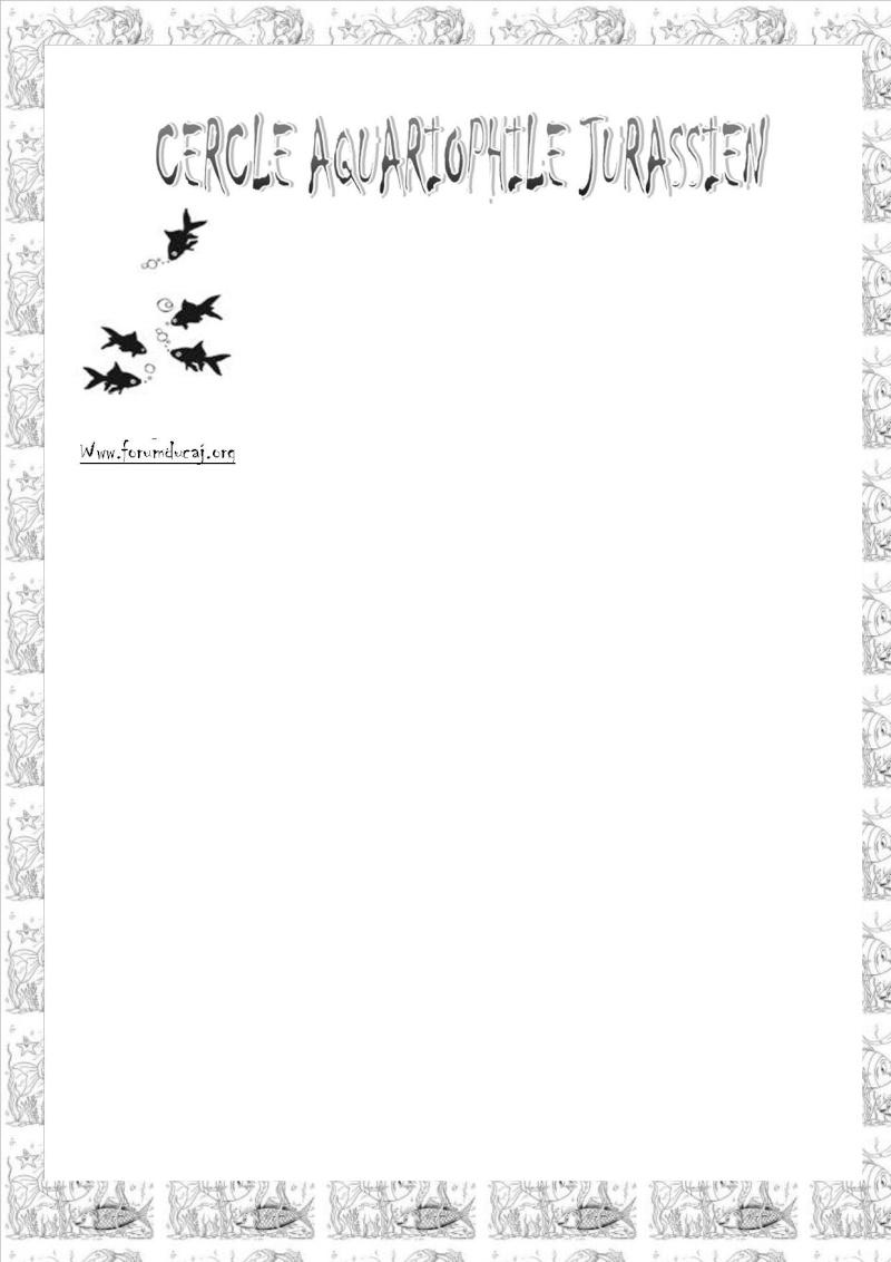 Concours pour l'affiche de la bourse 2011 et une nouvelle bannière du forum - Page 3 Lettre11