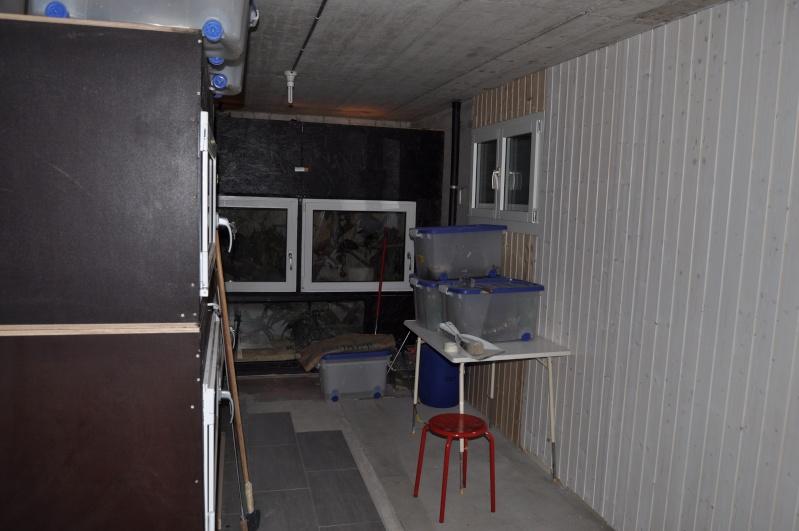 Mes installations, en construction (long post) - Page 10 Dsc_0134