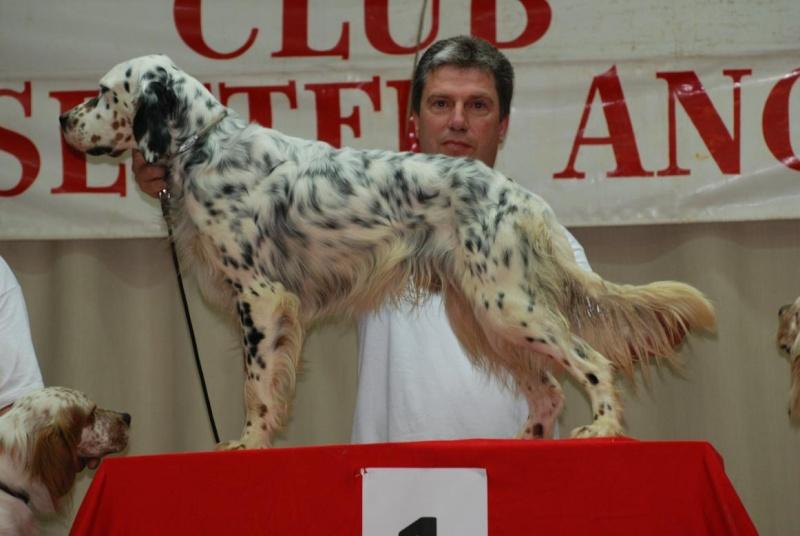 concours de chien  - Page 3 Eq_a_l10