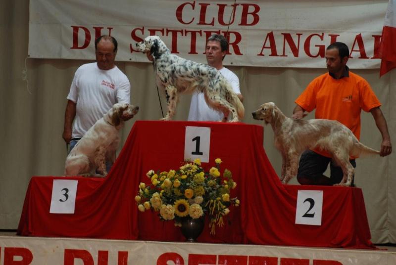 concours de chien  - Page 3 Eq_pod10