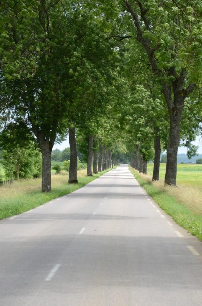 PARIS-COLMAR DU BORD DE LA ROUTE 4 - VAUCOULEUR km260 Bou_6827