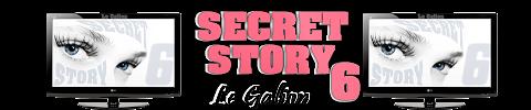 Secret Story 6 Ssg00010