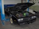 (CH) UP UP  VD Pontiac Trans-Am T.-Top 1978  CHF 24800.-, cédée à 12'820 euros !!!! Hpim1722