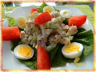 Salade persane au poulet, cornichons et olives Dscn0427