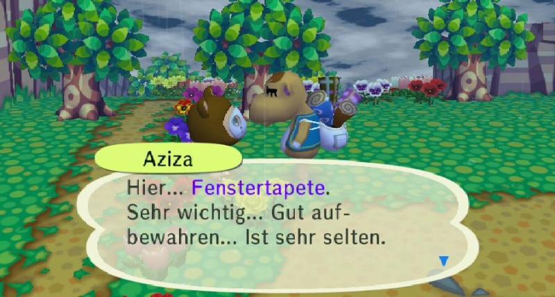 Ich habe von Aziza einen/eine ... erhalten. Fenste10