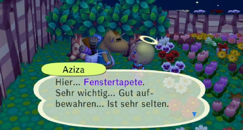 Ich habe von Aziza einen/eine ... erhalten. Fenste11