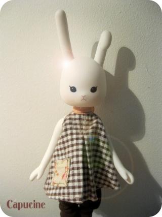 Ma Famille de Dolls - beaucoup de photos ^^ Img_1452