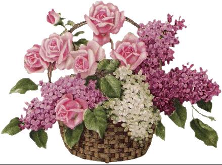 """Bonne semaine à tous  """" Dieu nous donne des pasteurs selon Son coeur"""" 60yv7y16"""