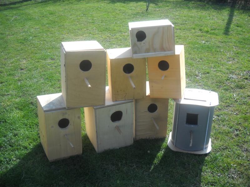 Comment avoir des nids pour 0 euro ??? Photo_88