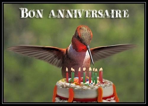 Bon Anniversaire Amicalementbirds  Bon-an11