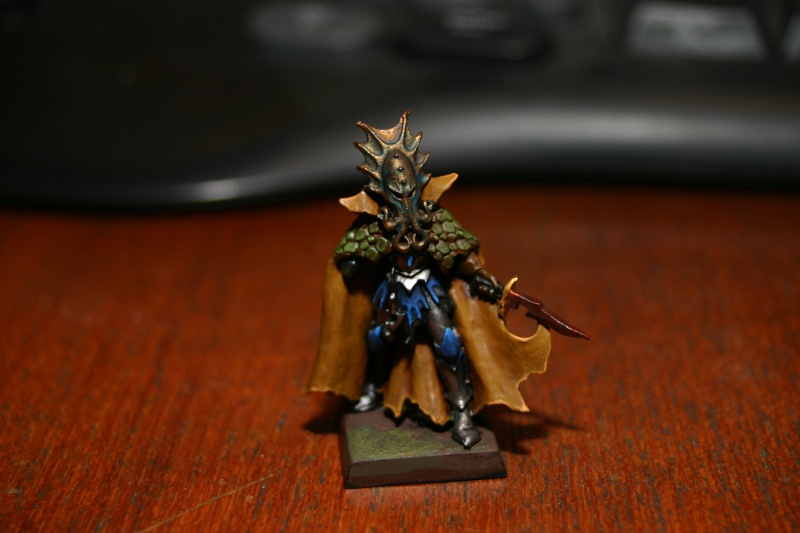 Topic Warhammer et jeux de figs. Img_3510