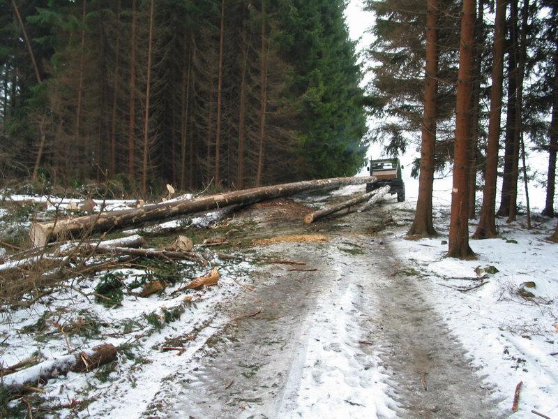 unimog mb-trac wf-trac pour utilisation forestière dans le monde - Page 19 100_0010