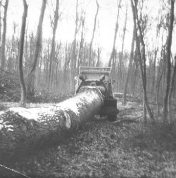 unimog mb-trac wf-trac pour utilisation forestière dans le monde - Page 20 3_foto10