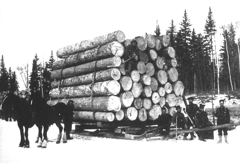 forestiers de roger : troisième partie - Page 6 55_6_a10