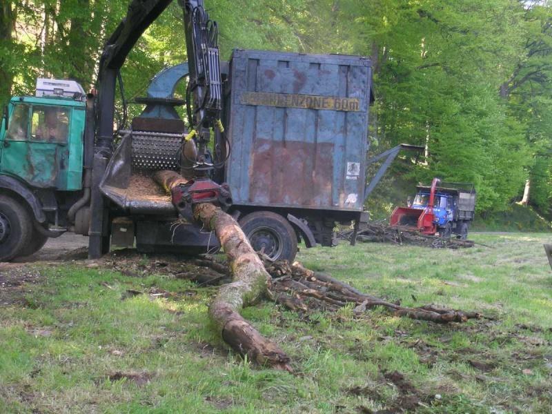 unimog mb-trac wf-trac pour utilisation forestière dans le monde - Page 5 Broyeu10