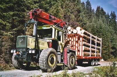 forestiers de roger : troisième partie - Page 2 Holztr11