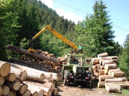 forestiers de roger : troisième partie - Page 2 Titelb10