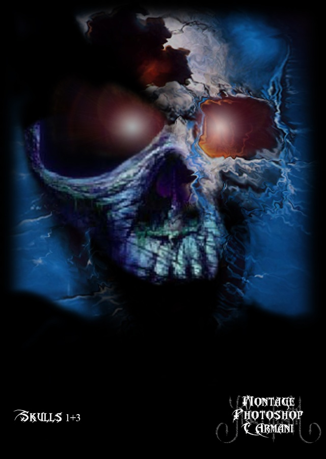Montages Cranes Photoshop Skulls11