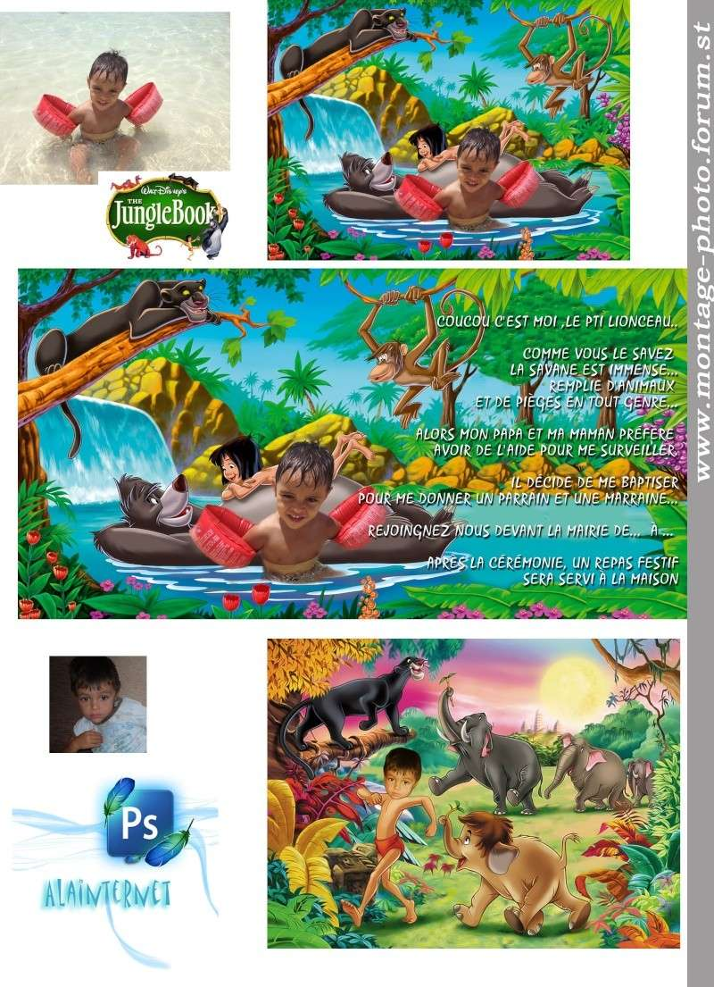 derniers montages en date - Page 18 Jungle17