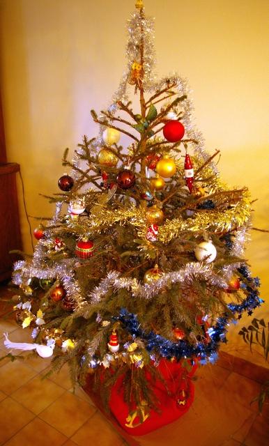 Prêt pour Noël - Page 2 Imgp2010