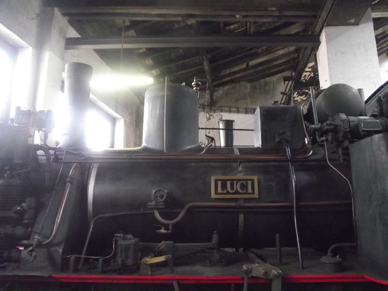 """Lok 3 """"LUCI"""" Nord_236"""