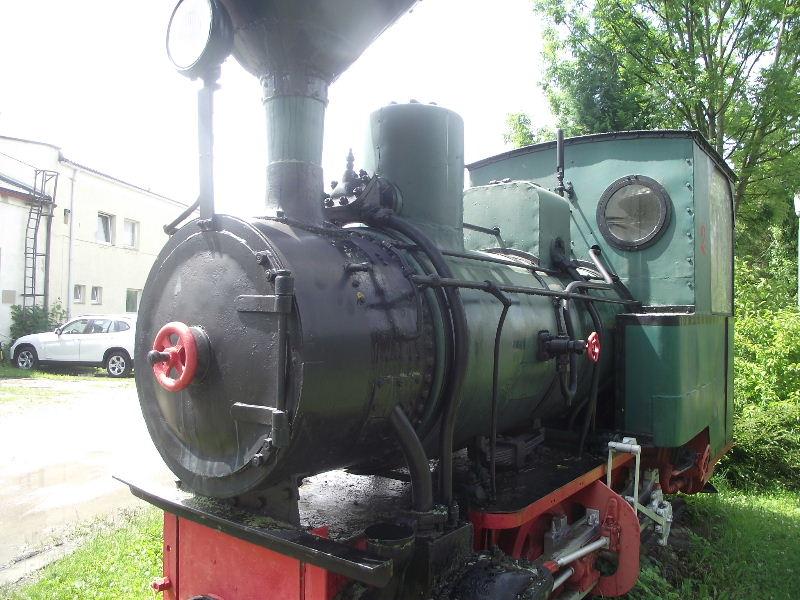 Grüner Heiner Nord_527