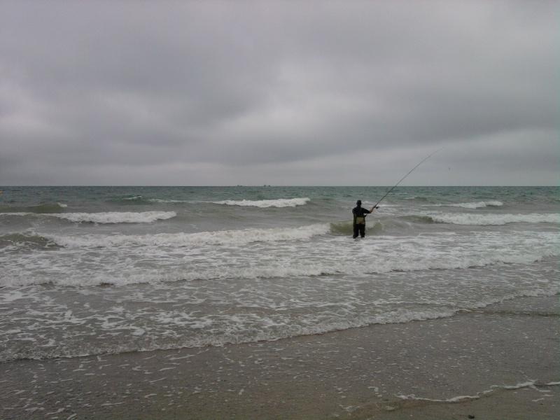 Pas beaucoup de fish !!! mais je reviens avec des photos !!!!!! Photo171