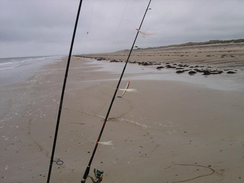 Pas beaucoup de fish !!! mais je reviens avec des photos !!!!!! Photo176