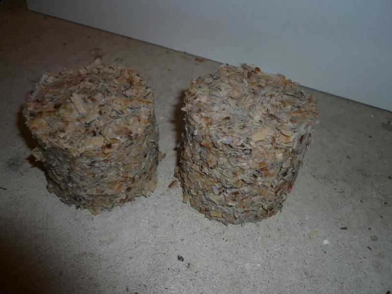 Presse à briquettes P1050625
