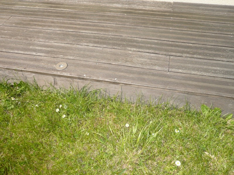 Terrasse bois P1060021