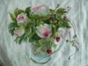Roses de Ronsard Ronsar11