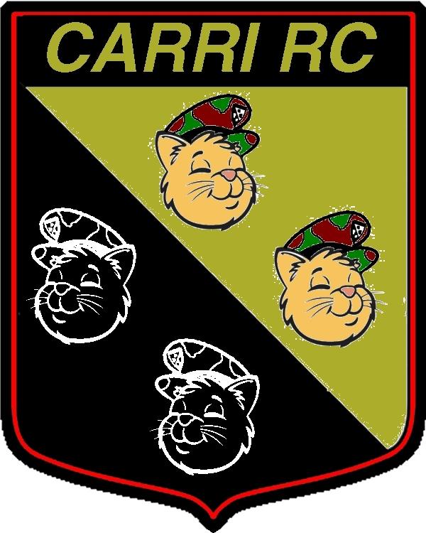 """1° Battaglione Carri RC """"Quattro Gatti"""" Carri_10"""