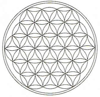 La Symétrie Miroir - Page 4 Fleurd10