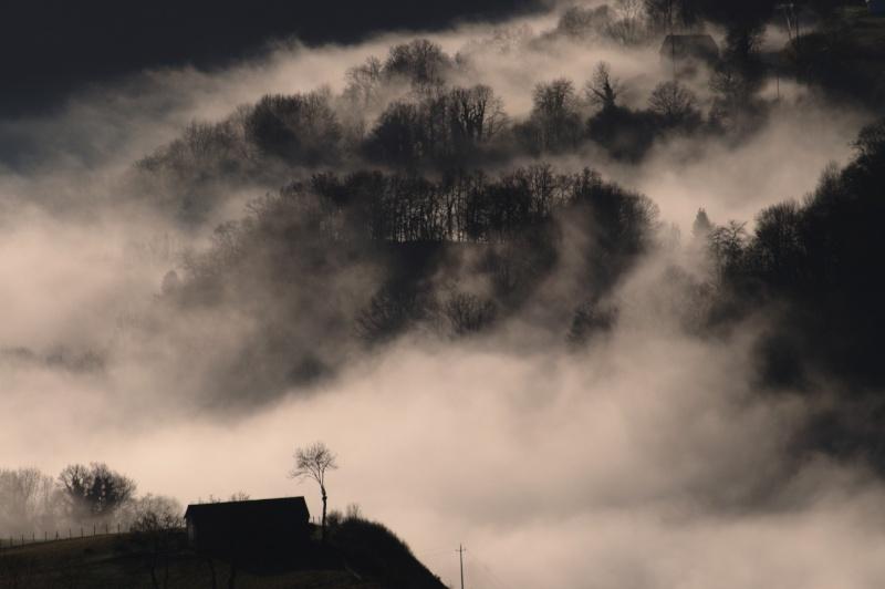 Sondage : Quelle photographie mérite d'être en en-tête du portail à partir du 13 février 2012 ? Le_bao10