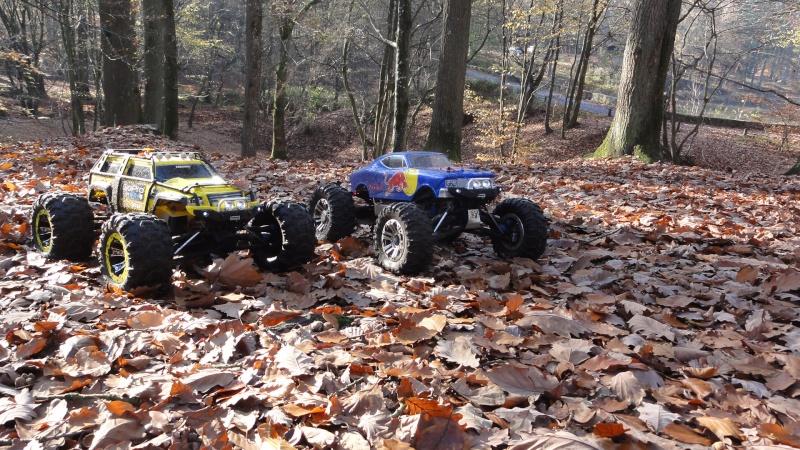 2 Summit pour une rencontre Automnale Foret de Rambouillet  Dsc05112